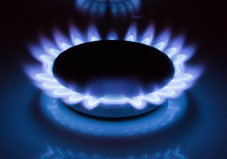 Blue flames of a burning natural gas. Gas cooker in action.  photo