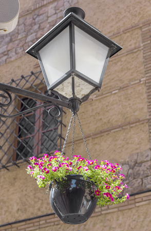 hanging flowers: Old lantern with hanging flowers, Barcelona, Spain.