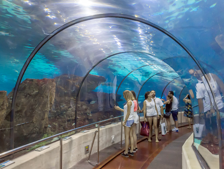 tunel: BARCELONA, SPAIN - JULY 4, 2015: Aquarium of Barcelona. Tourists looking at fishes at the aquarium of Barcelona. Editorial