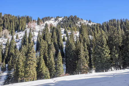 tien shan: Winter in Tien Shan mountains, canyon Butakovka, Almaty, Kazakhstan.