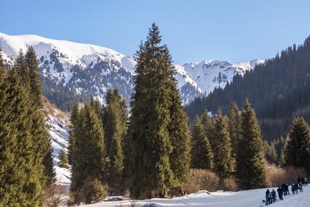 tien shan: ALMATY, KAZAKHSTAN - JANUARY 24, 2016: Winter in Tien Shan mountains, canyon Butakovka.