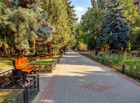 Alley in the city park in summer, Almaty, Kazakhstan