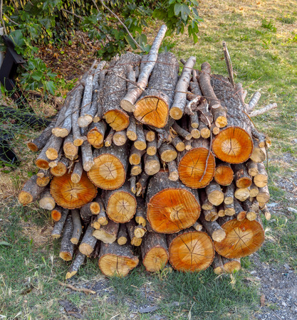 Assorted bundle of firewood in an Italian village 版權商用圖片