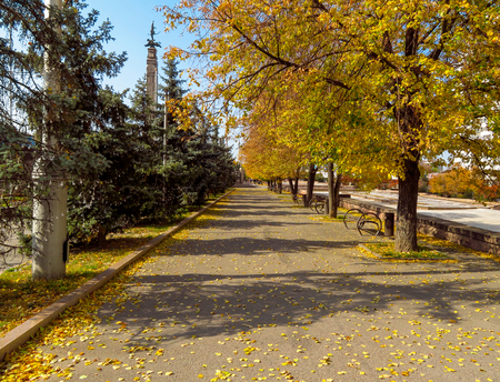 Golden autumn on the city street in Almaty at sunny day