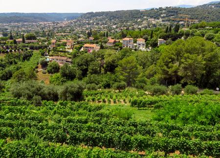 Panoramic landscape near the village Saint-Paul-de-Vence, Provence, South France.