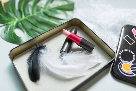 Light Pink Lipstick with black and white feather in the box Banco de Imagens