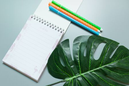 Three colorful pen on the to do list book with green leaf