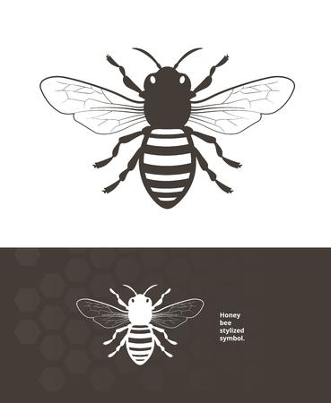 Ausführliche Honigbienenvektorillustration für Produktaufkleber.