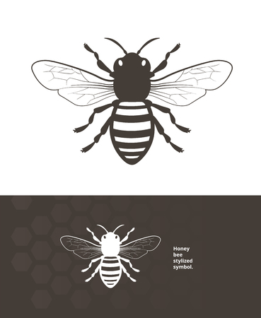 Detailed honey bee vector illustration for product label.