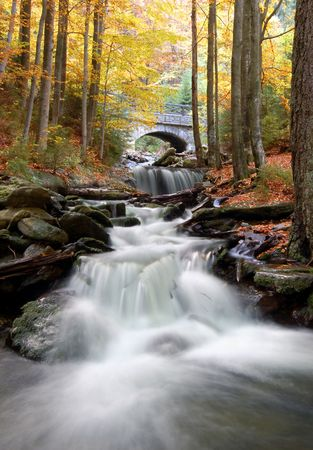 autumn creek in bohemia  Stock Photo