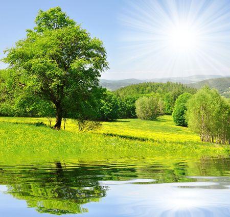 natural landscape: Spring landscape