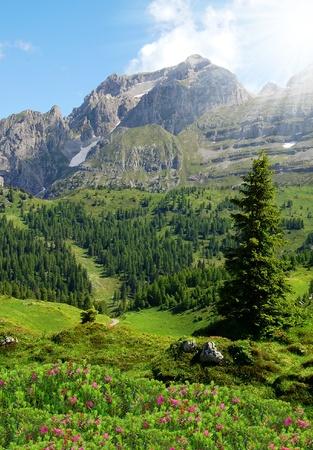 view of the mountain Brenta-Dolomites Italy  photo