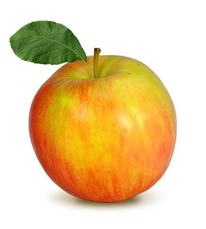 apple leaf: apple isolated on white  Stock Photo