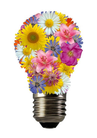 electric bulb: bulb flowers Stock Photo