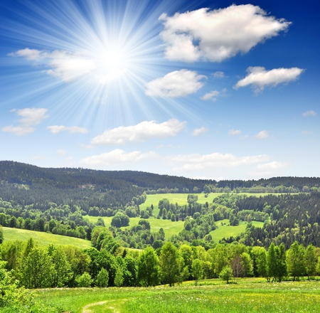 Spring landscape in the national park Sumava - Czech Republic  photo