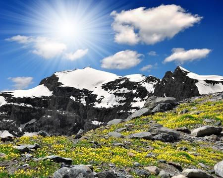 Swiss alps Stock Photo - 8928145