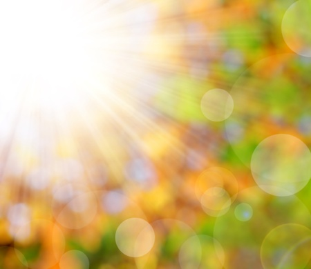 blurring: autumnal natural background blurring with sun rays