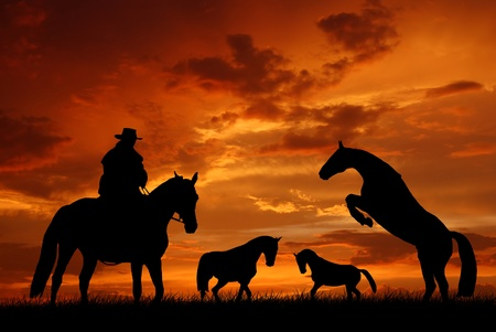 ranches: Silhouette cowboy with horses in the sunset