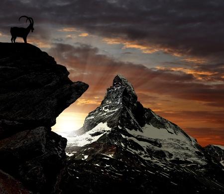 matterhorn: sunrise on the Matterhorn