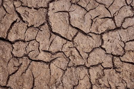 splitting up: Cracked Earth. Dry land  Stock Photo