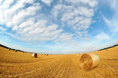 Straw bales on farmland with blue cloudy sky - photography fisheye photo