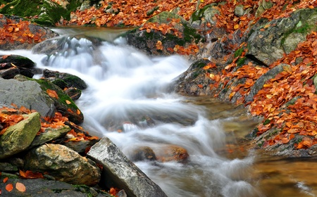 colorific: autumn creek in bohemia  Stock Photo