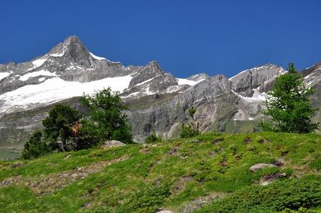 swiss alps: Piękne górskie Zinalrothorn - szwajcarskie Zdjęcie Seryjne