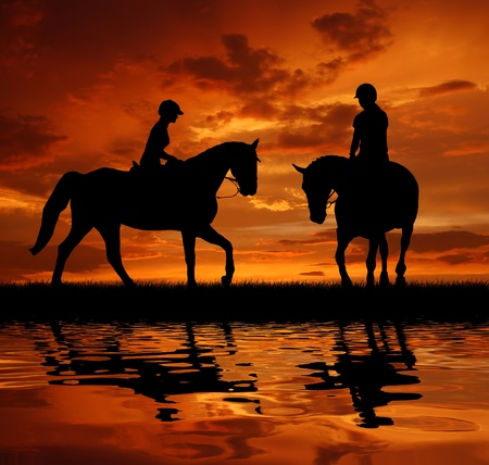 brave of sport: silhouette of a rider on a horse