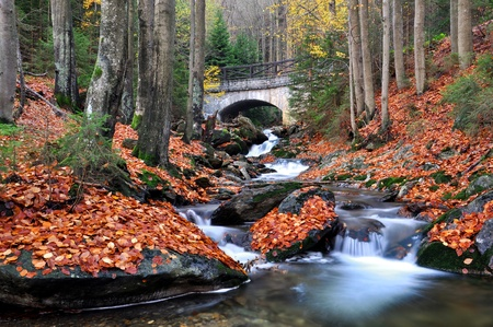 bohemia: autumn creek in Czech republic  Stock Photo