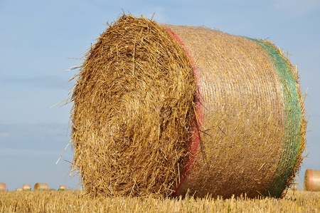 Straw bales on farmland Stock Photo - 10697233