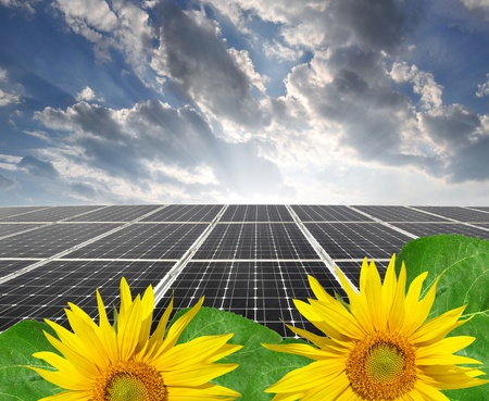 silicium: Solar energy panels with sunflower