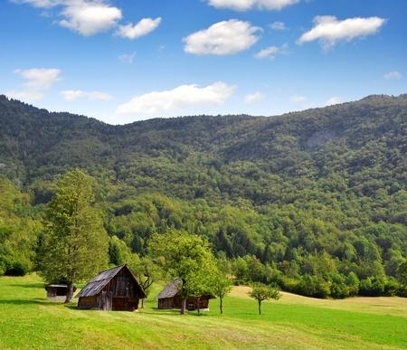 julian: Valley Voje in Triglav National Park - Julian Alps, Slovenia