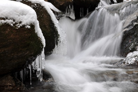 winter creek in the national park Sumava - Czech Republic  Stock Photo - 10876517