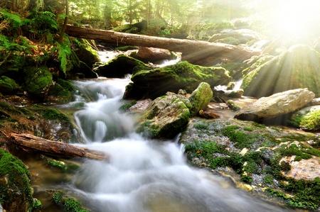 cascades: Waterval in het nationale park Sumava-Tsjechische Republiek Stockfoto