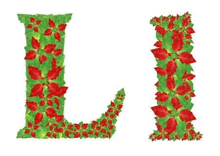 Christmas Alphabet from poinsettia  photo