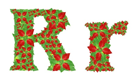 Christmas Alphabet from poinsettia  photo