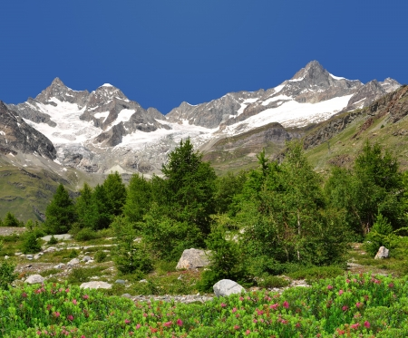 traditional climbing: Beautiful mountain Ober Gabelhorn - Swiss alps Stock Photo