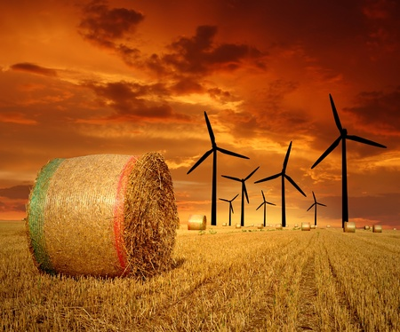 Straw bales on farmland with wind turbine in the sunset photo