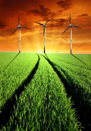 sunset above the spring landscape with wind turbines photo