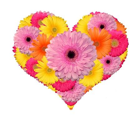 valentin: flower heart isolated