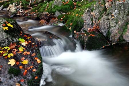 autumn creek in Czech Republic  Stock Photo - 12009101