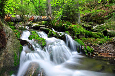 Waterfall in the Czech Republic Stock Photo - 12725196