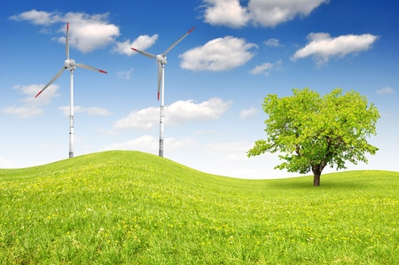 trees services: spring landscape with wind turbines
