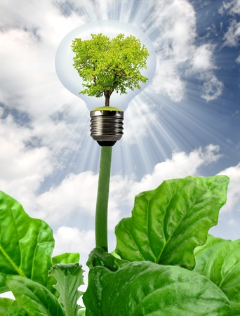 ecological problem: green tree growing in a bulb Stock Photo
