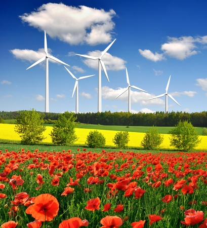 spring landscape with wind turbines  photo