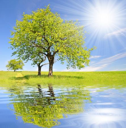 春天的风景伴着蓝天