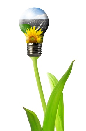 Bulb with of solar panel isolated  photo