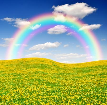 青い空と牧草地の上の虹