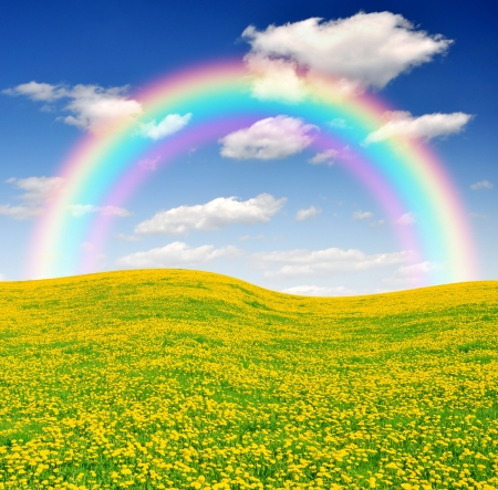 rainbow above the meadow with blue sky  Imagens