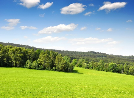 bohemia: Spring landscape in the national park Sumava - Czech Republic